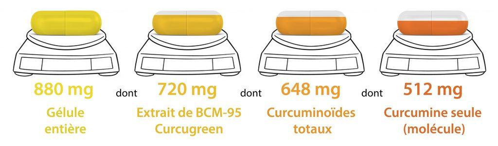 Gelule Curcumine Curcumactif 2 Nutrixeal Info