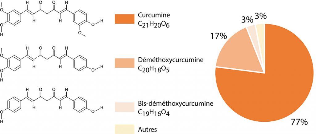Curcuminoïdes naturels dans extrait de curcuma