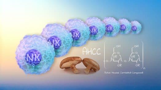 AHCC immunité Nutrixeal Info