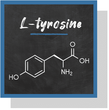 L-tyrosine index nutraceutique Nutrixeal Info