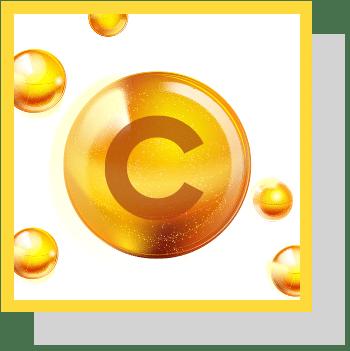 Vitamine C index nutraceutique Nutrixeal Info 2