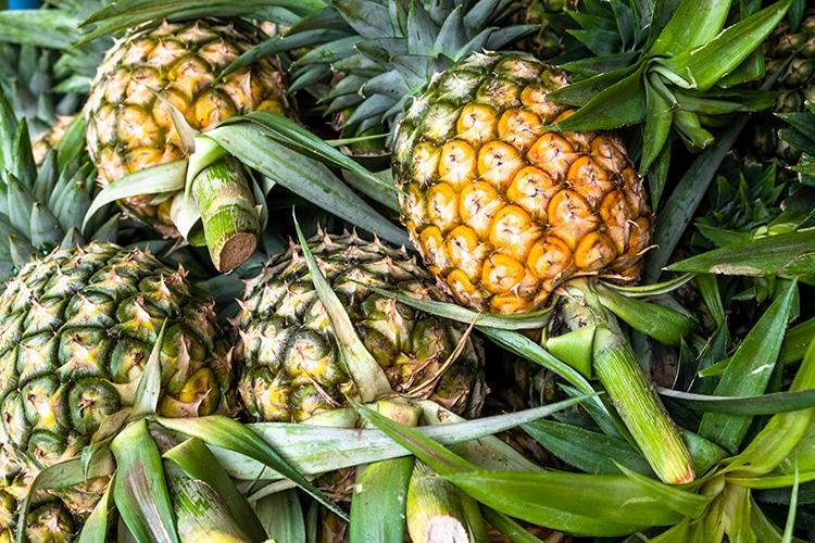 La bromélaïne est le principe actif de l'ananas.