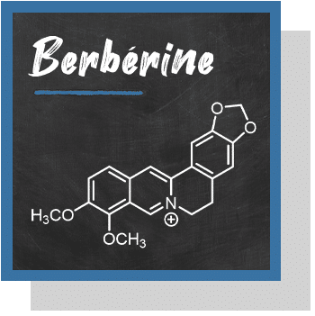 berbérine index nutraceutique Nutrixeal Info