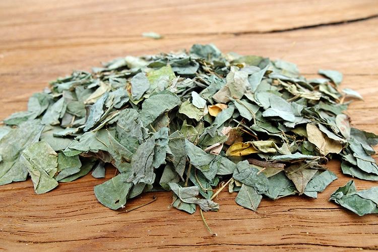 feuilles séchées de desmodium