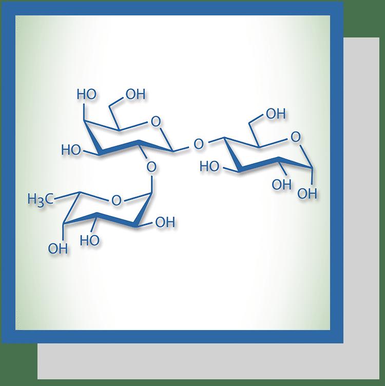 fucosyllactose index nutraceutique Nutrixeal Info