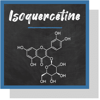 isoquercétine index nutraceutique Nutrixeal Info