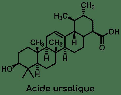 structure acide ursolique basilic sacré Nutrixeal Info