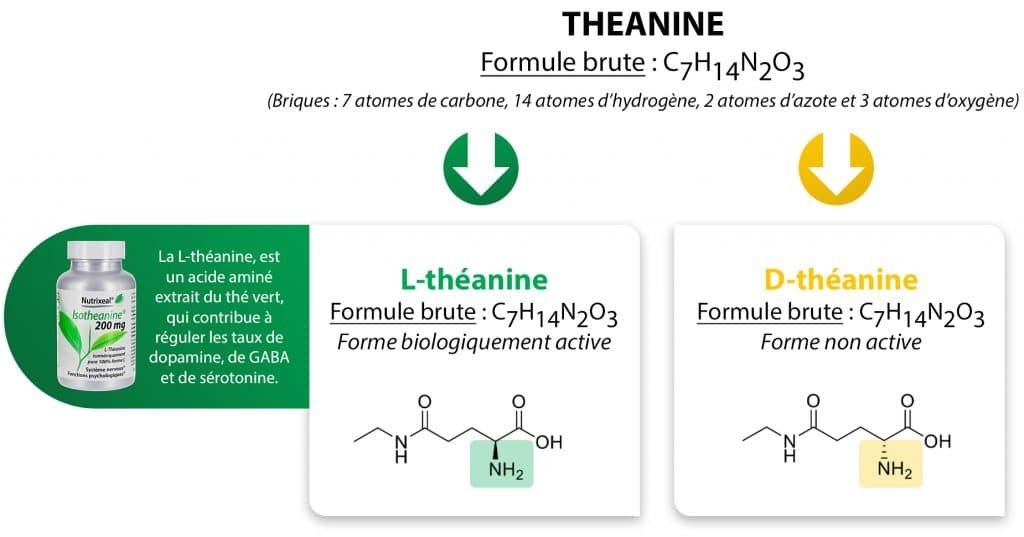 theanine_chiralité_nutrixeal-Info