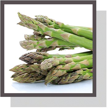 asperge index nutraceutique Nutrixeal Info