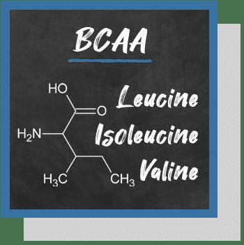 bcaa leucine isoleucine valine index nutraceutique Nutrixeal Info