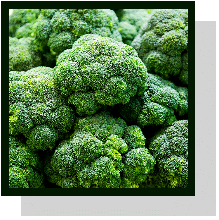 Brocoli index nutraceutique nutrixeal info