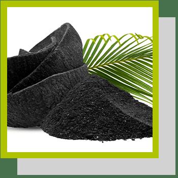 charbon végétal activé index nutraceutique Nutrixeal Info