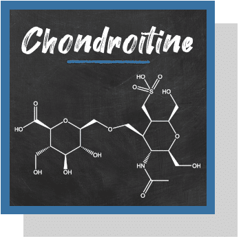 chondroitine index nutraceutique Nutrixeal Info