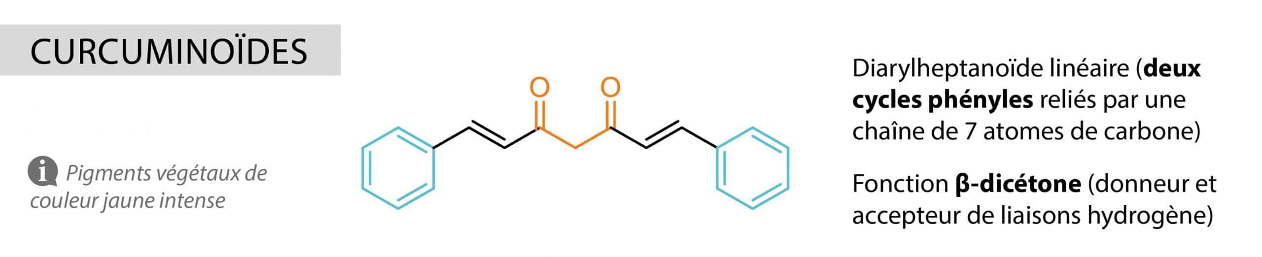 curcuminoides Nutrixeal Info