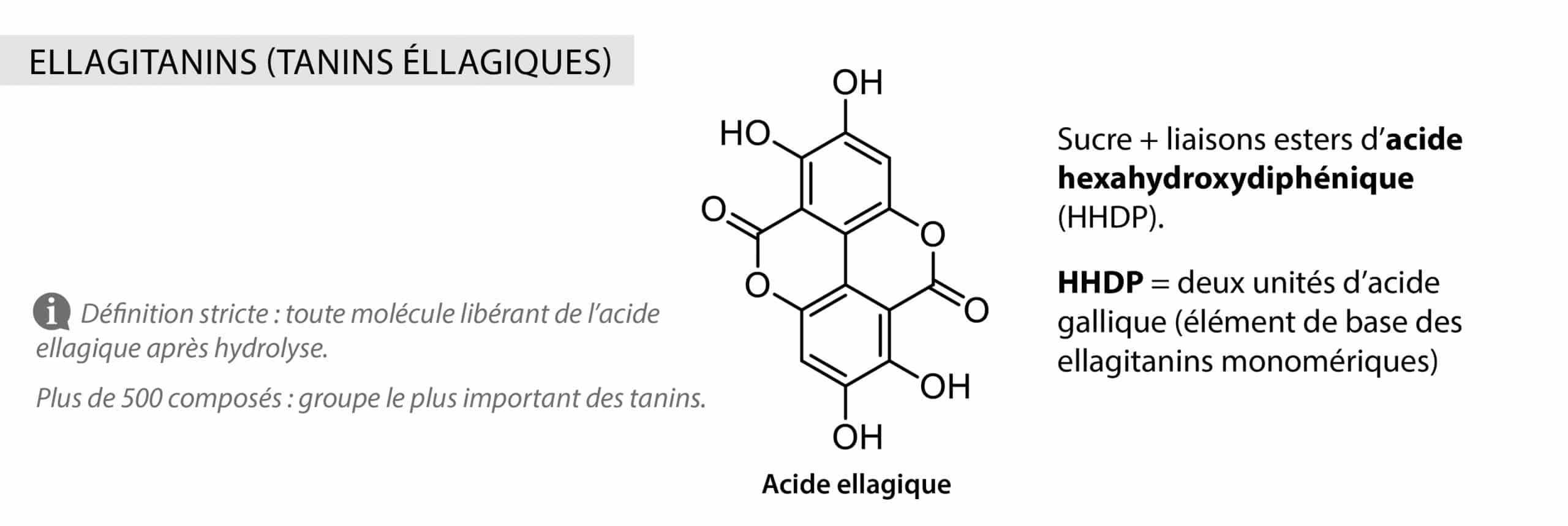 Ellagitanins tanins éllagiques Nutrixeal Info