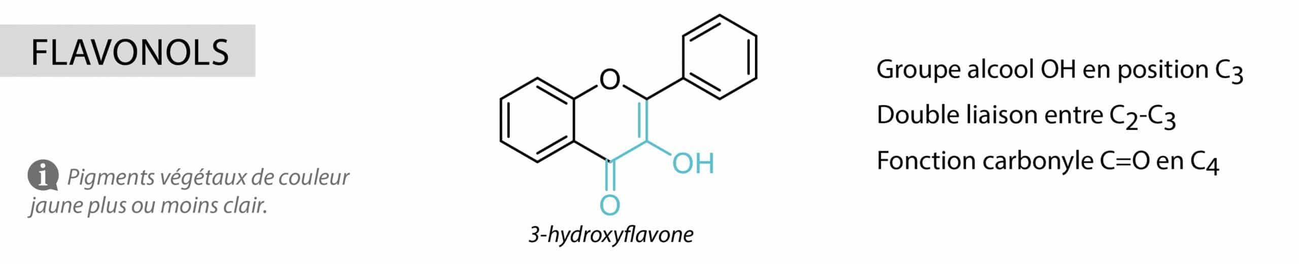 flavonols Nutrixeal Info