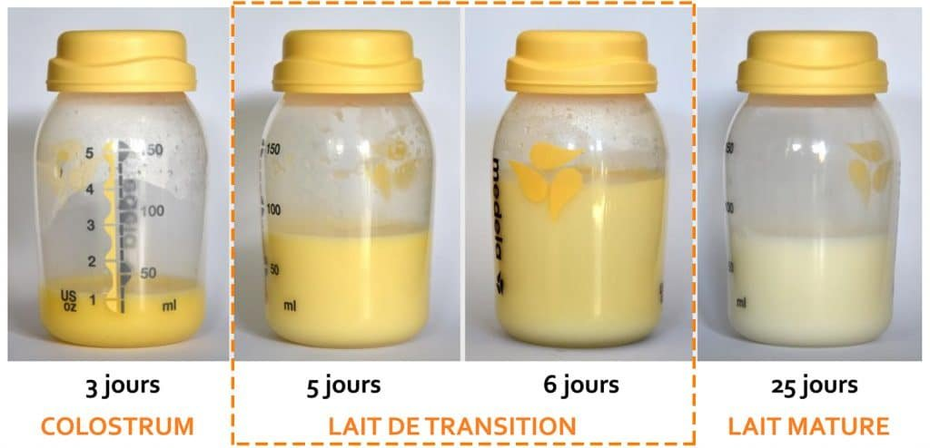 Lait de transition Nutrixeal Info