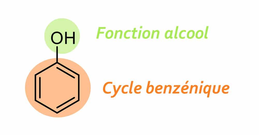 structure du noyaux phénolique ou phénol