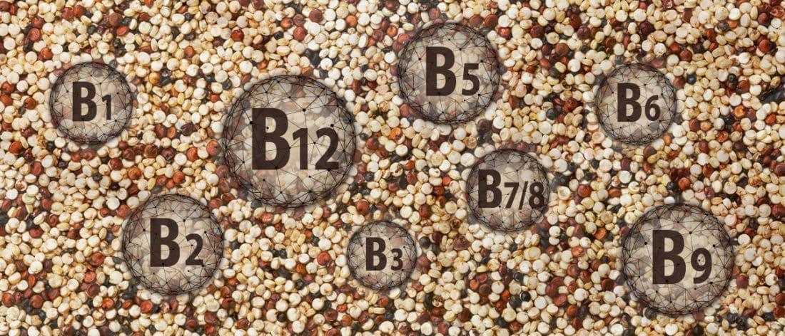 Quinogerm Nutrixeal permet un apport de l'ensemble des vitamines B.
