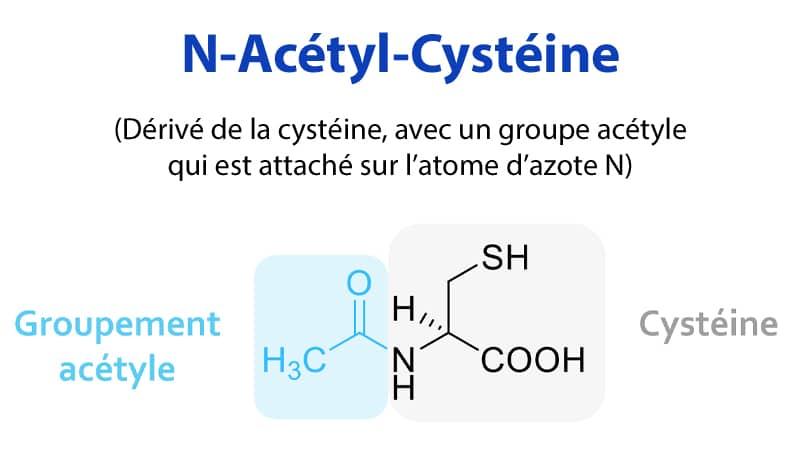 Structure moléculaire de la NAC N-acetyl-cysteine.