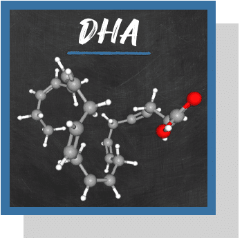 dha omega-3 nutraceutique Nutrixeal Info