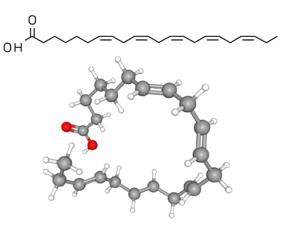 Structure moléculaire du DPA (acide docosapentaénoïque )