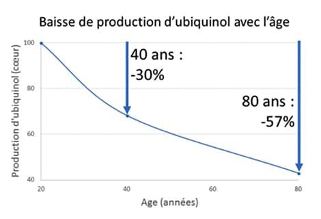La production d'ubiquinol par le foie diminue d'au moins 30% à partir de 40 ans.