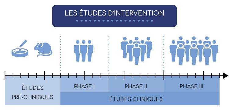 Chronologie des études d'intervention : études pré-cliniques et cliniques.