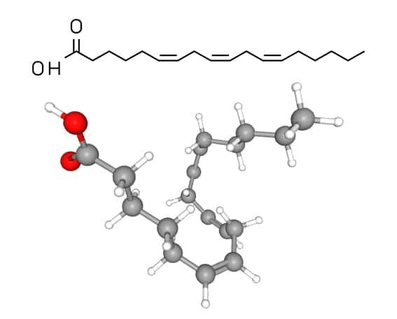 Structure moléculaire du GLA (acide gamma-linolénique)