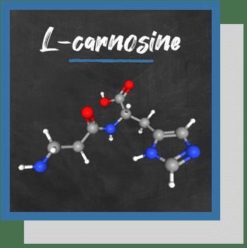 L-carnosine index nutraceutique Nutrixeal Info