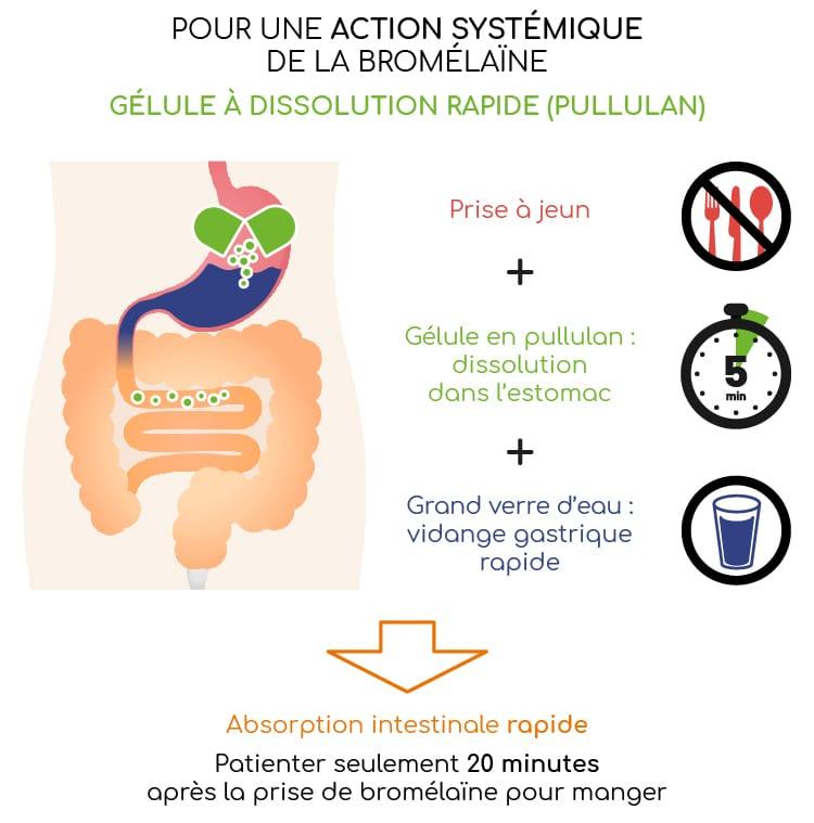 Bromélaïne et gélule dissolution rapide.