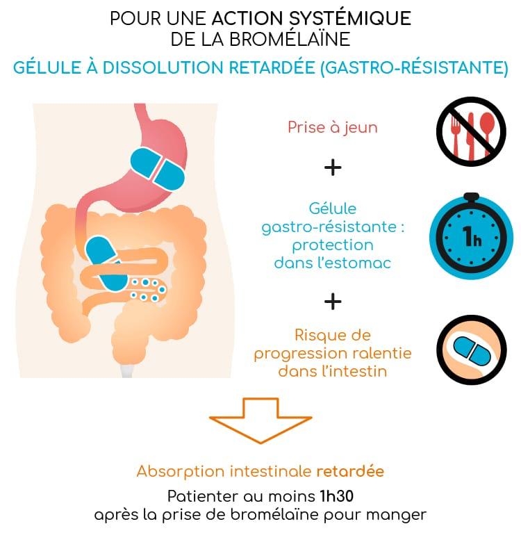 Bromélaïne et gélule gastro-résistante.