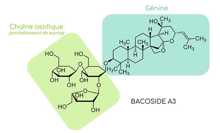 Structure chimique du bacoside A3