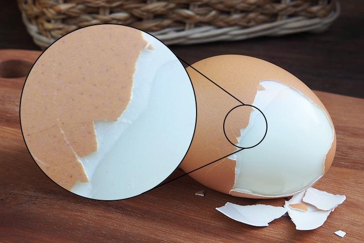 Membrane d'œuf, visible sur un œuf cuit.