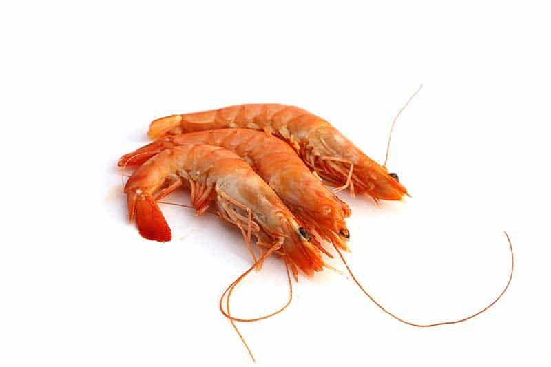 l'astaxanthine donne sa couleur aux crevettes.