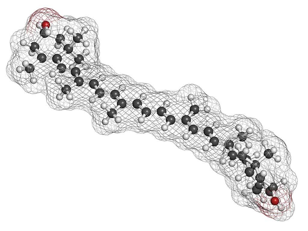 Structure chimique 3D de la zeaxanthine.