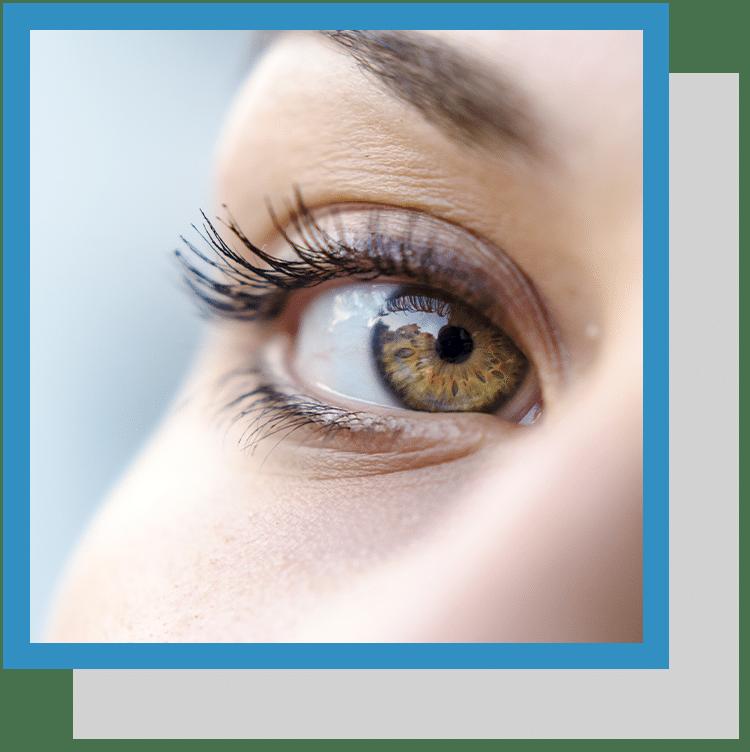 Lutéine vision index nutraceutique nutrixeal info