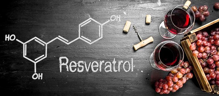 Paradoxe francais : resveratrol, vin et santé cardio-vasculaires.