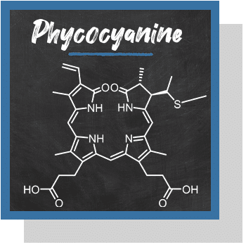 phycocyanine index nutraceutique Nutrixeal Info