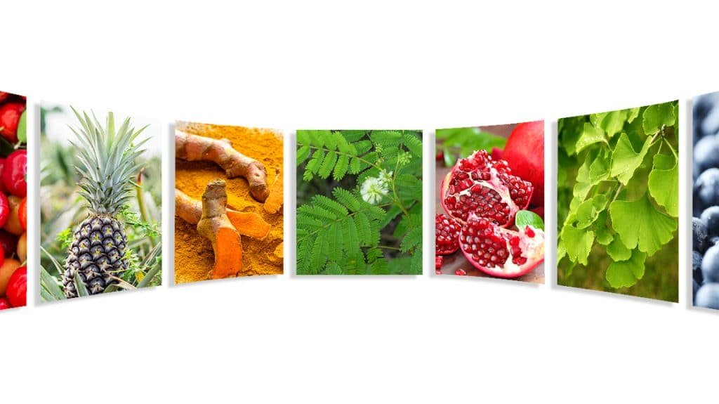 index nutraceutique nutrixeal info