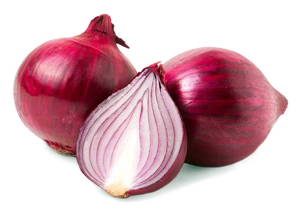Oignon rouge source polyphenols quercetine flavonoïdes