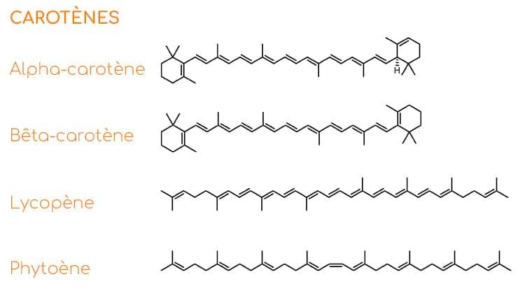 Exemples de carotènes et structures moléculaires.