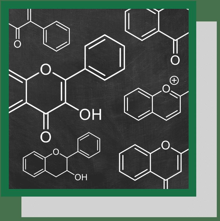 flavonoïdes index nutraceutique nutrixeal info