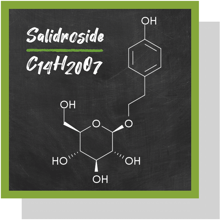 salidroside index nutraceutique nutrixeal info