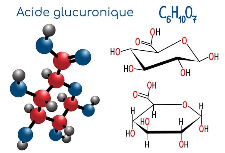 acide glucuronique structure