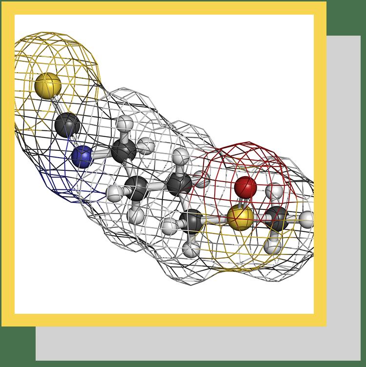 isothiocyanates sulforaphane index nutraceutique nutrixeal info