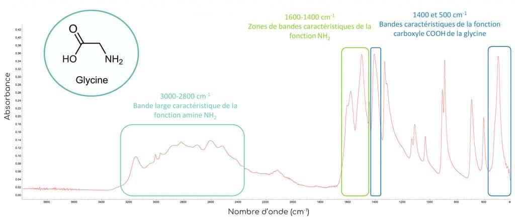 spectre absorption glycine