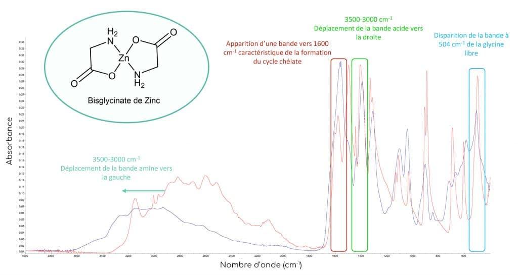 spectres absorption glycine libre et bisglycinate de zinc