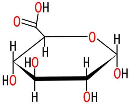 structure acide glucuronique nutrixeal info-01