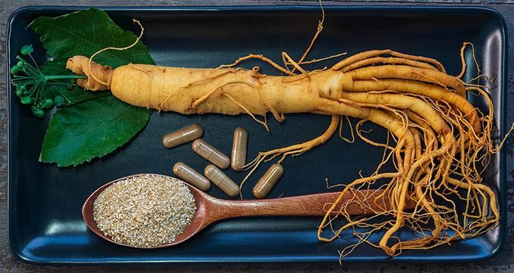 Ginseng et ginsénosides en nutraceutique